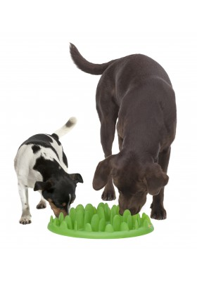GAMELLE ANTI GLOUTON GREEN CHIEN
