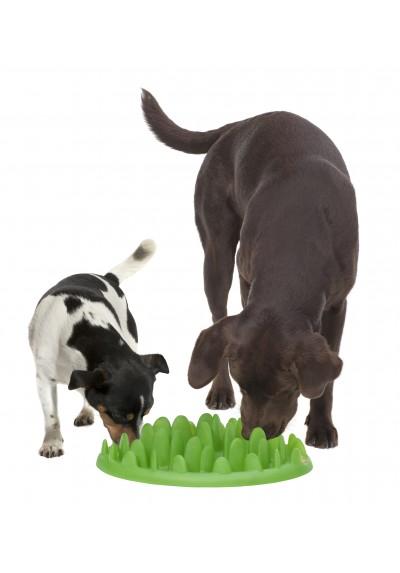 gamelle anti glouton green chien scp des drs v t yann dubreuil et jm elbaz. Black Bedroom Furniture Sets. Home Design Ideas