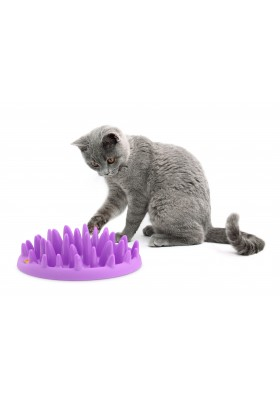 GAMELLE ANTI GLOUTON CHAT CATCH FEEDER