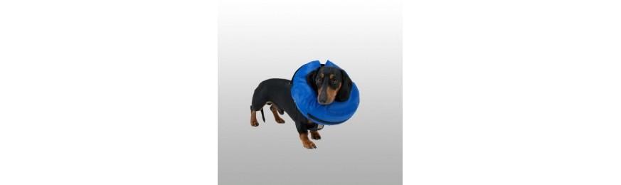 Protection suite chirurgie, contre léchage...